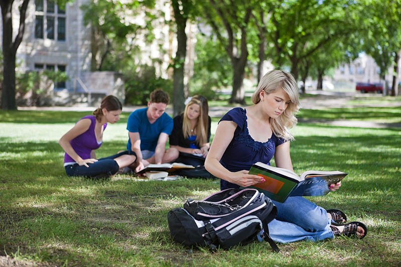 College students studying in college campus